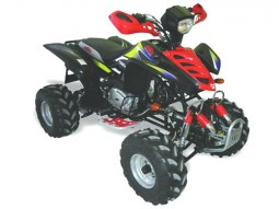 ΜTG MOTORS ATV 200